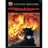 Spells & Magic (jdr Advanced Dungeons & Dragons 2ème édition révisée en VO)