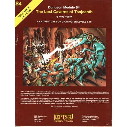 S4 The Lost Caverns of Tsojcanth (jdr AD&D 1ère édition en VO) 001
