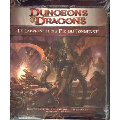 H2 Le Labyrinthe du Pic du Tonnerre (jdr Dungeons & Dragons 4 en VF) 007