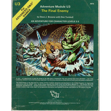 U3 The Final Enemy (jdr AD&D 1ère édition en VO) 001