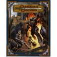 Le Maître de la Forteresse de Fer (jdr Dungeons & Dragons 3.0 et 3.5 en VF) 007