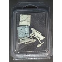 Figurines de Gardiennes (blister de figurines Fenryll en VF)