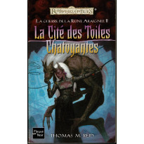 La Cité des Toiles Chatoyantes (roman Les Royaumes Oubliés en VF)